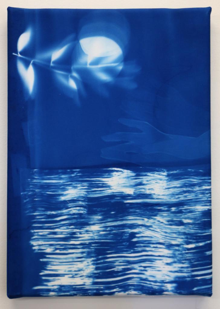 Kaye Donachie, Untitled 3, 2015, cianotipia su cotone, cm 25x35
