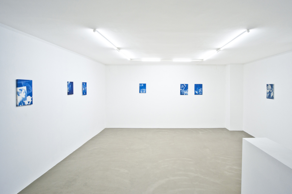 installation view mostra Kaye Donachie, 2015